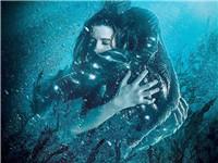 跨物种的爱情:托罗《水形物语》斩获四座小金人